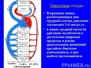 Емкостные сосуды В крупных венах, расположенных вне грудной клетки, давление сос
