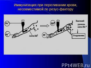 Иммунизация при переливании крови, несовместимой по резус-фактору