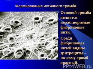 Формирование истинного тромба Основой тромба является нерастворимые фибриновые н