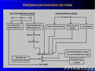 Фибринолитическая система