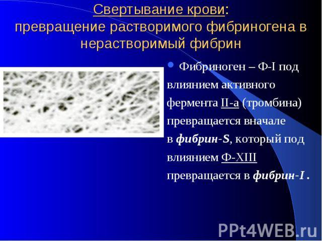 Свертывание крови: превращение растворимого фибриногена в нерастворимый фибрин Фибриноген – Ф-I под влиянием активного фермента II-а (тромбина) превращается вначале в фибрин-S, который под влиянием Ф-ХIII превращается в фибрин-I .