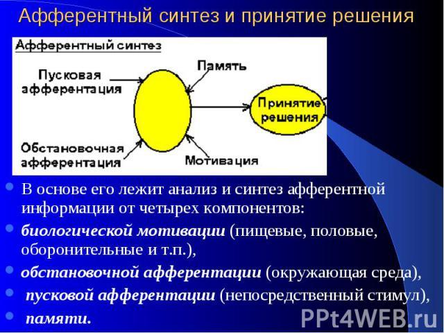 Афферентный синтез и принятие решения В основе его лежит анализ и синтез афферентной информации от четырех компонентов: биологической мотивации (пищевые, половые, оборонительные и т.п.), обстановочной афферентации (окружающая среда), пусковой аффере…