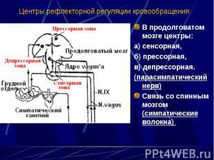 В продолговатом мозге центры: В продолговатом мозге центры: а) сенсорная, б) пре