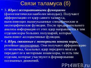 Связи таламуса (б) 3. Ядра с ассоциативными функциями (филогенетически наиболее