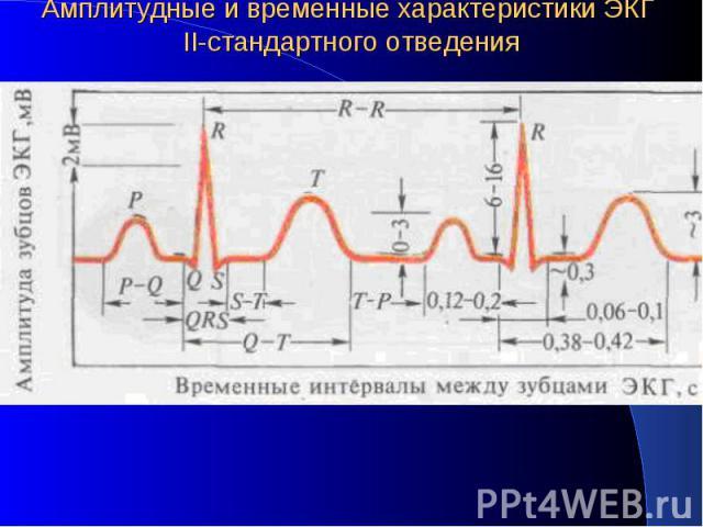 Амплитудные и временные характеристики ЭКГ II-стандартного отведения