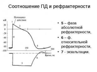 5 – фаза абсолютной рефрактерности, 5 – фаза абсолютной рефрактерности, 6 – ф. о