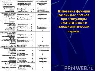 Изменения функций различных органов при стимуляции симпатических и парасимпатиче