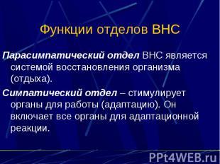 Функции отделов ВНС Парасимпатический отдел ВНС является системой восстановления