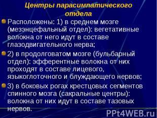 Центры парасимпатического отдела Расположены: 1) в среднем мозге (мезэнцефальный