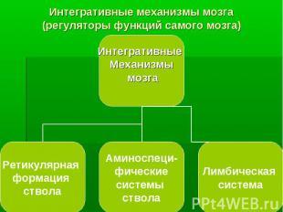 Интегративные механизмы мозга (регуляторы функций самого мозга)