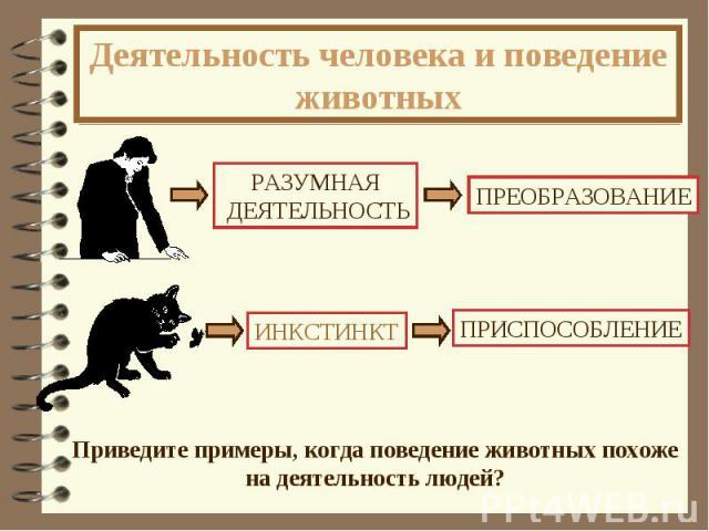 Деятельность человека и поведение животных