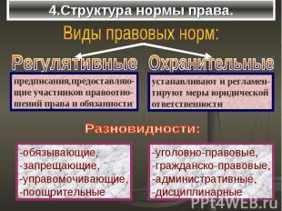 4.Структура нормы права.