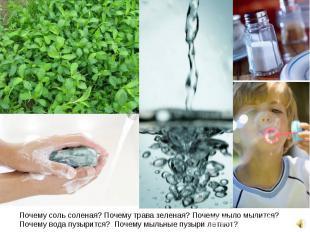 Почему соль соленая? Почему трава зеленая? Почему мыло мылится? Почему вода пузы
