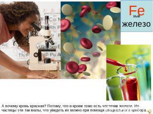 А почему кровь красная? Потому, что в крови тоже есть частички железа. Но частиц