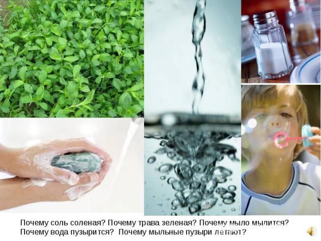 Почему соль соленая? Почему трава зеленая? Почему мыло мылится? Почему вода пузырится? Почему мыльные пузыри летают? Почему соль соленая? Почему трава зеленая? Почему мыло мылится? Почему вода пузырится? Почему мыльные пузыри летают?