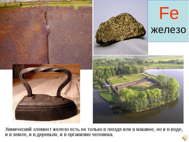 Химический элемент железо есть не только в гвозде или в машине, но и в воде, и в земле, и в деревьях, и в организме человека. Химический элемент железо есть не только в гвозде или в машине, но и в воде, и в земле, и в деревьях, и в организме человека.