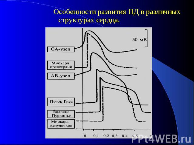 Особенности развития ПД в различных структурах сердца. Особенности развития ПД в различных структурах сердца.