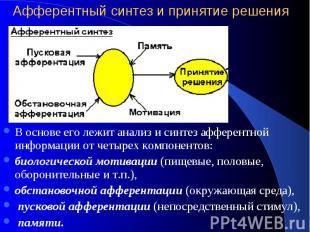 Афферентный синтез и принятие решения В основе его лежит анализ и синтез афферен