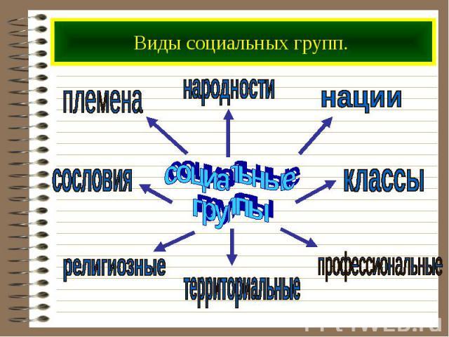 Виды социальных групп.