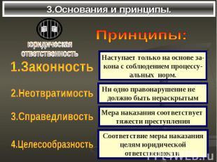 3.Основания и принципы.