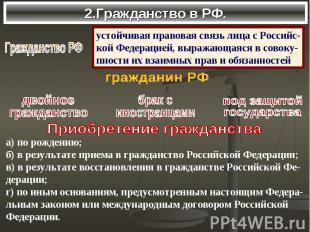 2.Гражданство в РФ.