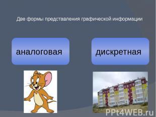 Две формы представления графической информации