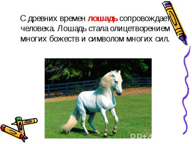 С древних времен лошадь сопровождает человека. Лошадь стала олицетворением многих божеств и символом многих сил. С древних времен лошадь сопровождает человека. Лошадь стала олицетворением многих божеств и символом многих сил.