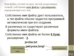 Собственно имя файлу дает пользователь, а тип файла обычно задается программой а