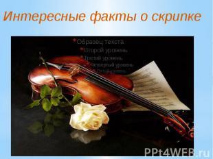 Интересные факты о скрипке