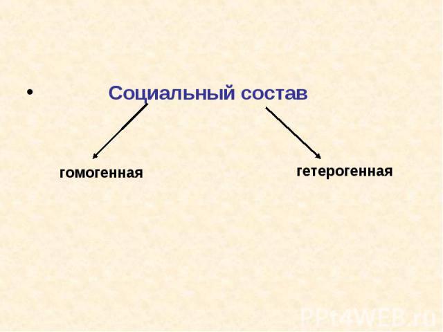 Социальный состав Социальный состав