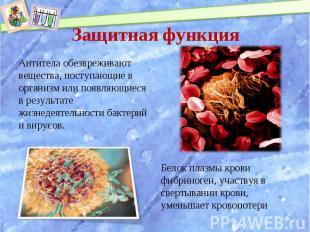 Антитела обезвреживают вещества, поступающие в организм или появляющиеся в резул