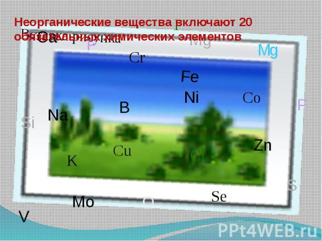 Неорганические вещества включают 20 обязательных химических элементов