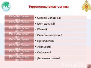 Территориальные органы