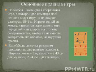 Волейбол – командная спортивная игра, в которой две команды по 6 человек ведут и