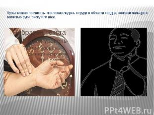 Пульс можно посчитать, приложив ладонь к груди в области сердца, кончики пальцев