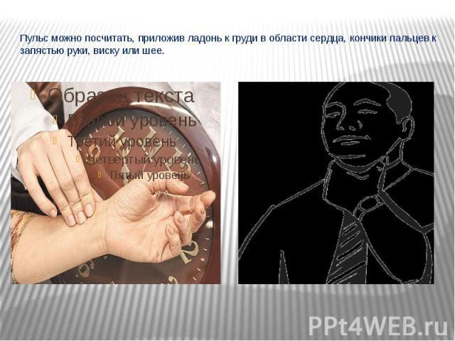 Пульс можно посчитать, приложив ладонь к груди в области сердца, кончики пальцев к запястью руки, виску или шее.