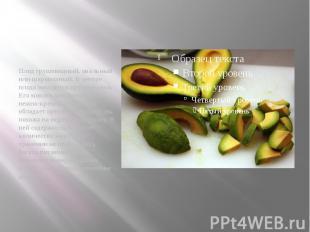 Плод грушевидный, овальный или шаровидный. В центре плода находится крупное семя