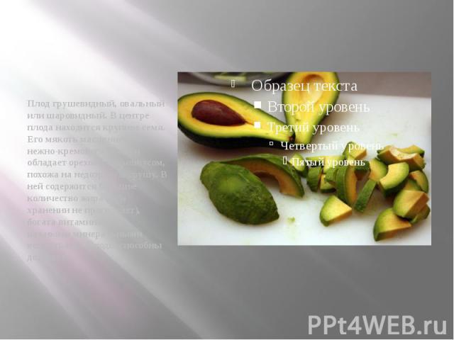 Плод грушевидный, овальный или шаровидный. В центре плода находится крупное семя. Его мякоть маслянистая, нежно-кремового цвета и обладает ореховым привкусом, похожа на недозрелую грушу. В ней содержится большое количество жира (при хранении не прог…