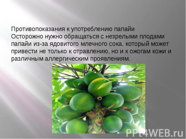Противопоказания к употреблению папайи Осторожно нужно обращаться с незрелыми плодами папайи из-за ядовитого млечного сока, который может привести не только к отравлению, но и к ожогам кожи и различным аллергическим проявлениям.