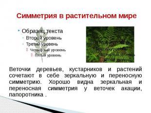 Симметрия в растительном мире Веточки деревьев, кустарников и растений сочетают