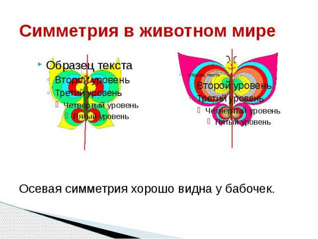 Симметрия в животном мире Осевая симметрия хорошо видна у бабочек.