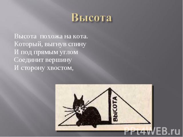 Высота похожа на кота. Высота похожа на кота. Который, выгнув спину И под прямым углом Соединит вершину И сторону хвостом,