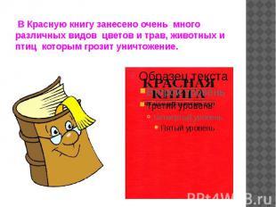 В Красную книгу занесено очень много различных видов цветов и трав, животн