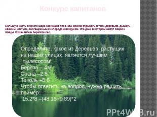 Большую часть земного шара занимают леса. Мы можем отдыхать в тени деревьев, дыш