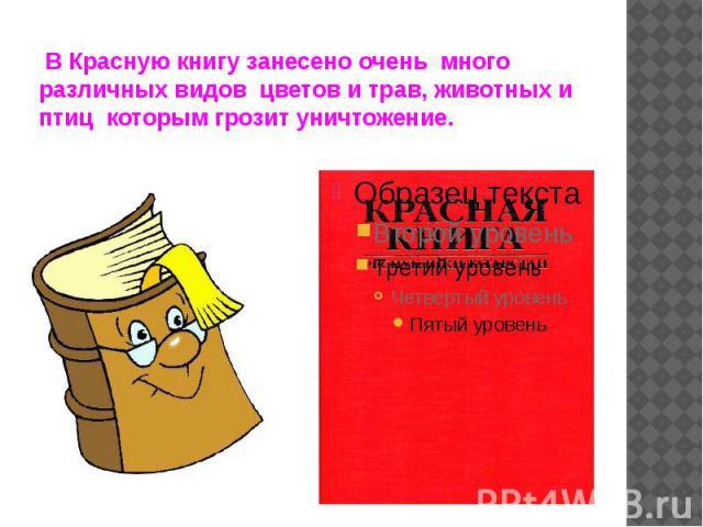 В Красную книгу занесено очень много различных видов цветов и трав, животных и птиц которым грозит уничтожение.