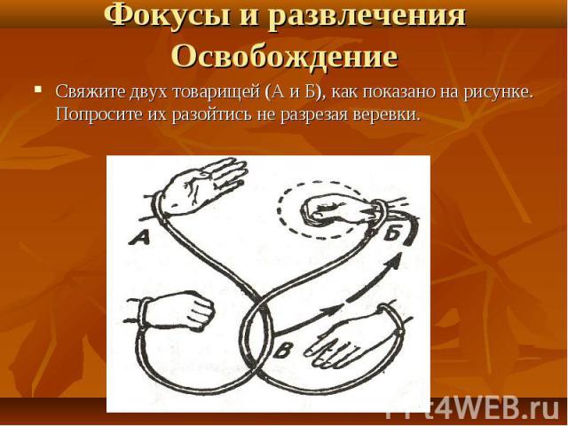 Свяжите двух товарищей (А и Б), как показано на рисунке. Попросите их разойтись не разрезая веревки. Свяжите двух товарищей (А и Б), как показано на рисунке. Попросите их разойтись не разрезая веревки.