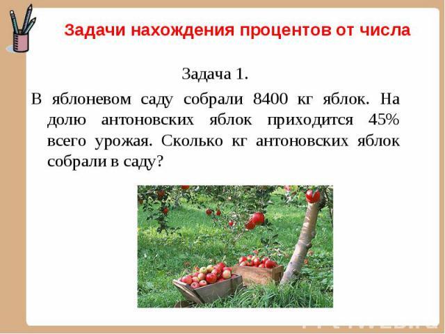Задача 1. Задача 1. В яблоневом саду собрали 8400 кг яблок. На долю антоновских яблок приходится 45% всего урожая. Сколько кг антоновских яблок собрали в саду?