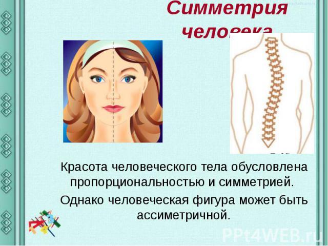 Симметрия человека Красота человеческого тела обусловлена пропорциональностью и симметрией. Однако человеческая фигура может быть ассиметричной.