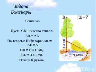Решение. Решение.  Пусть CD – высота ствола. BD = АВ По теореме Пифагора и