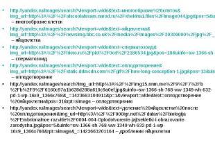 http://yandex.ru/images/search?viewport=wide&text=многообразие%20клеток&